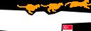 Fast Cheetah logo